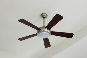 Mobile / Voice controlled Ceiling Fan Switch
